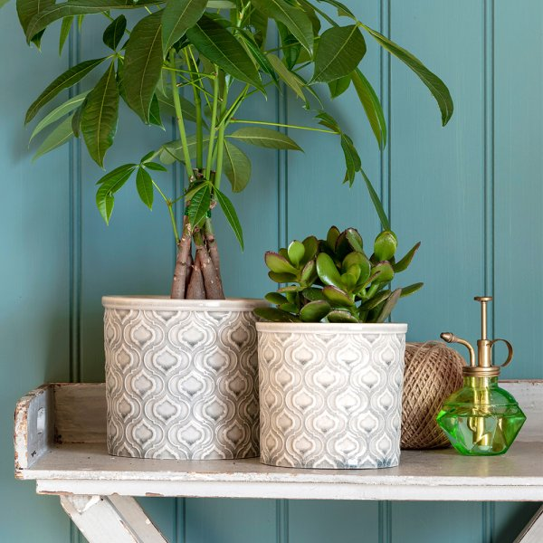 Venetian Grey Small Indoor Ceramic Plant Pot Lifestyle